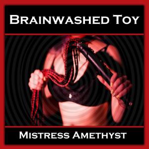 Brainwashed Toy