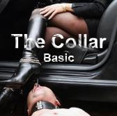 The Collar - Basic