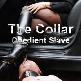 The Collar 2 - Obedient Slave