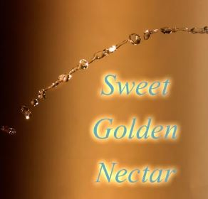 Sweet Golden Nectar