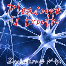 PLEASURE IS TRUTH BRAINSCRUB REMIX