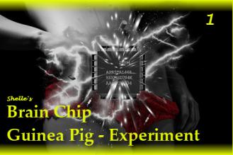 Brain Chip Upgrade-Guinea Pig 1