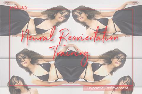 Neural Reorientation