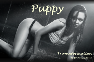 Tranceformation - Puppy