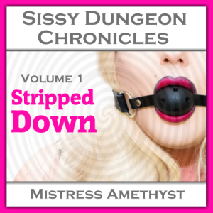 Sissy Dungeon Chronicles - Stripped Down
