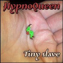 TINY SLAVE