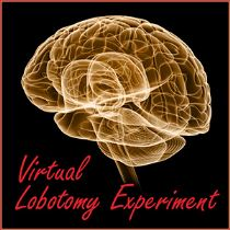 Virtual Lobotomy Experiment