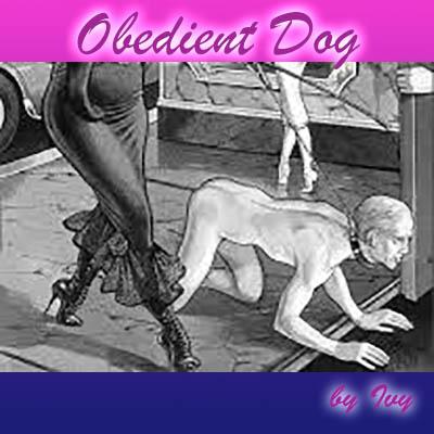 Obedient Dog