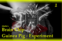 Brain Chip Upgrade-Guinea Pig 1