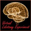 Virtual Lobotomy Experiment