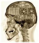 Retrain Your Brain